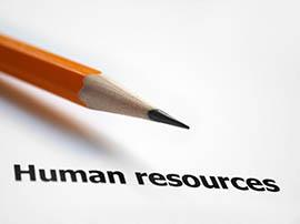 mauritius country profile human resources